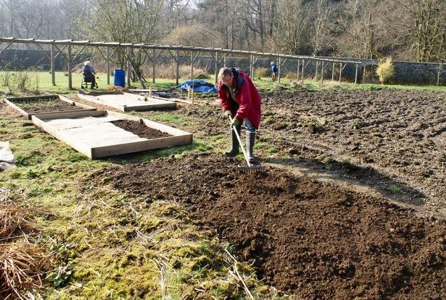 Beginning to establish the veg plots - Feb 2019