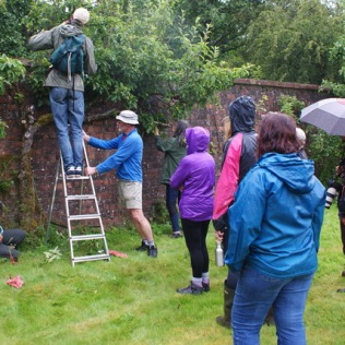 Course on summer pruning. (July, but not very summery!)