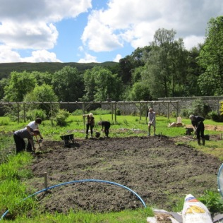 Preparing the site for the polytunnel. (June)
